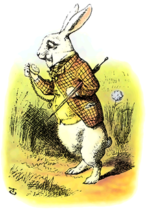 The rabbit that went down the rabbit-hole