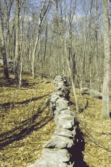 A New England stone wall