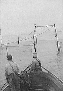 A 1940s-era trap fishing boat