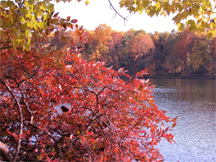Autumn colors on Clopper Lake