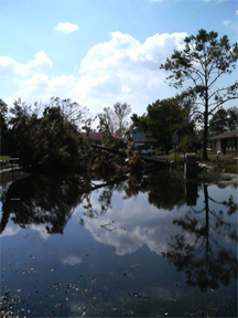 Flooding in Metarie, Louisiana, following Hurricane Katrina in 2005