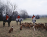 A foxhunt in Virginia