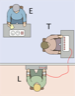 A schematic representation of the Milgram Experiment